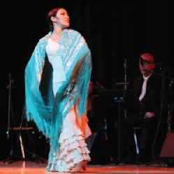FLAMENCO: STEPS THROUGH TIME